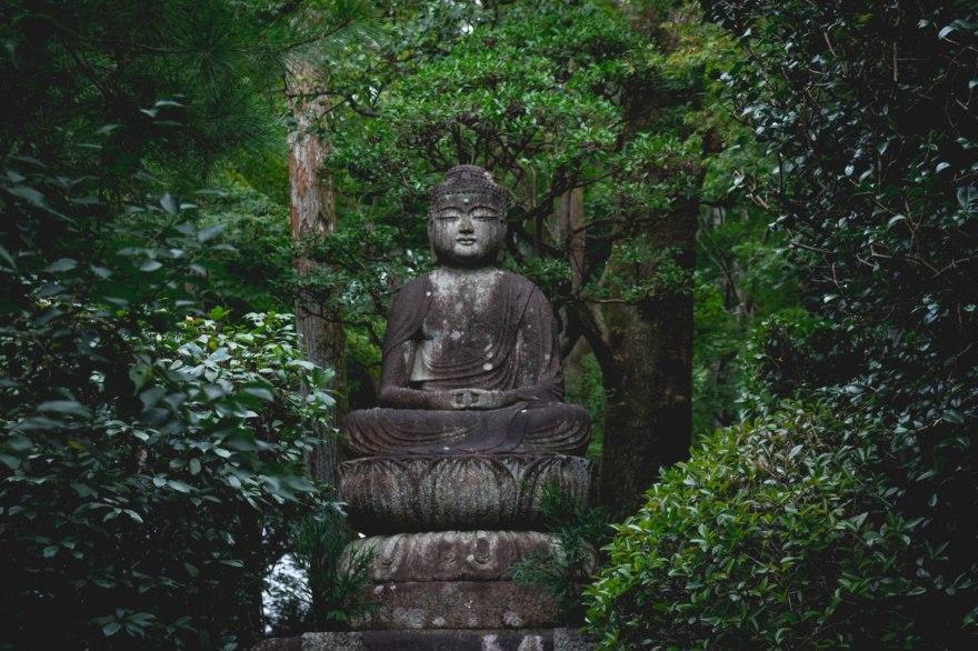 Meditation – why do it?